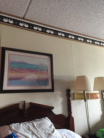 Windmill Inn & Suites: photo0.jpg