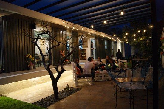 Café Organico Picture Of Dominica 19 Puebla Tripadvisor
