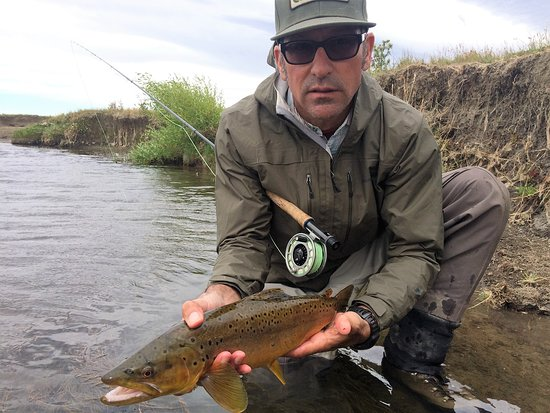 A beautiful brown trout picture of patagonia line for Fly fishing patagonia