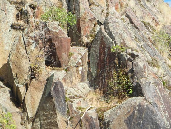 Clarkston, WA: Ancient indian drawings right on the river