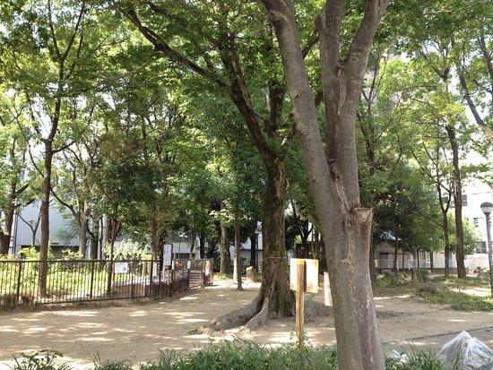 Awazaminami Park