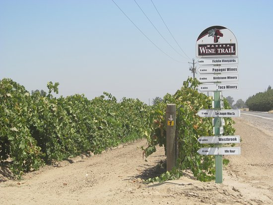 Madera Wine Trail: signage and vineyward