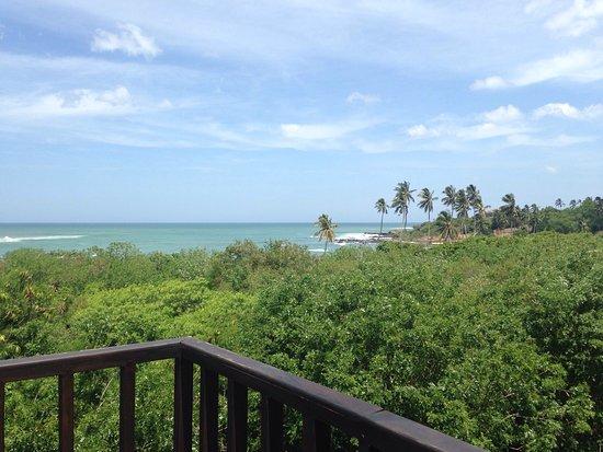 Rekawa, Sri Lanka: photo1.jpg
