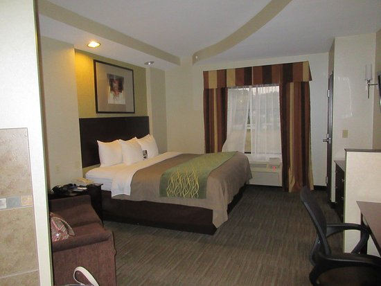 Comfort Inn & Suites : Room 201