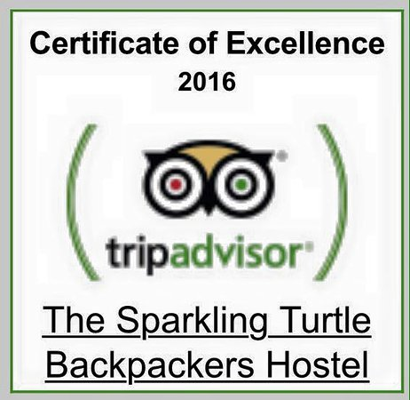 The Sparkling Turtle Backpackers Hostel: Certificate of Excellence