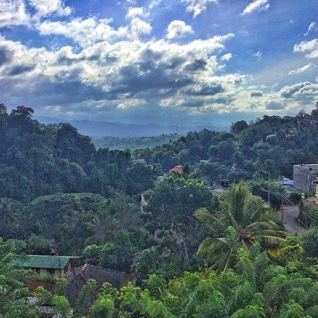 Nature Walk Resort: photo0.jpg