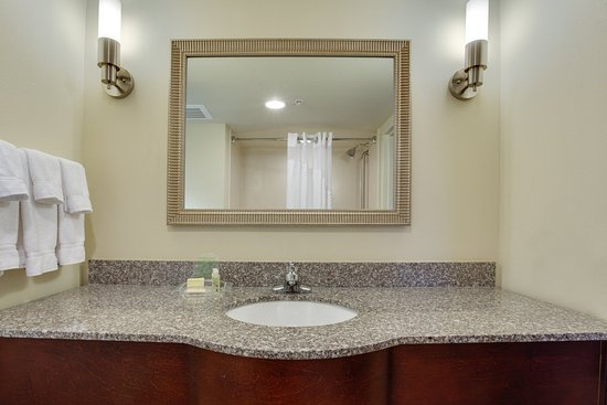 Holiday Inn Pensacola-N Davis Hwy: Standard Guest Bathroom