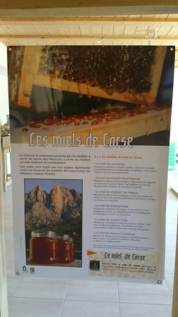 Murzo, França: 20160804_144743_large.jpg