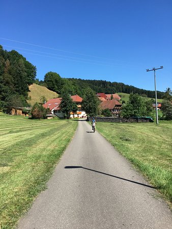 Camping Kinzigtal: Nearby cycle path