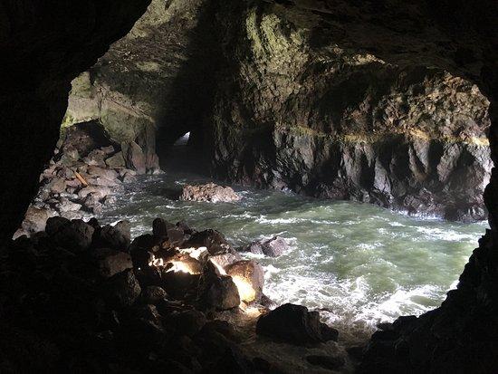 Florence, Oregón: Sea Lion Caves