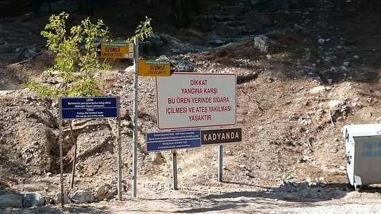 Yesiluzumlu, Turcja: DSC_0033_large.jpg