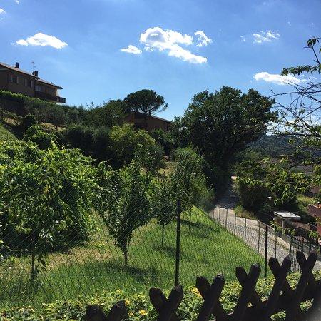 Villa Nuba Charming Apartments: photo4.jpg