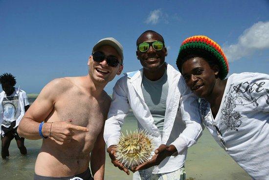 Jacaranda Beach Resort: IMG-20160723-WA0003_large.jpg