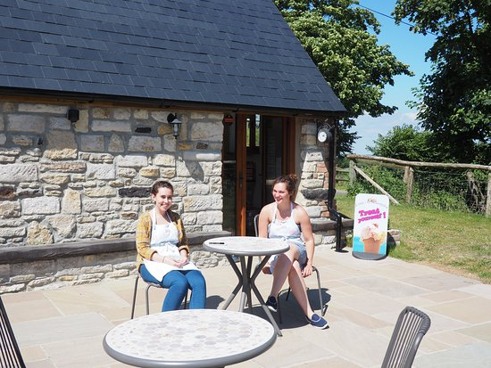 Isle of Purbeck, UK: Lovely little tea room run by these lovely ladies