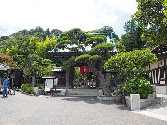 Hase-dera Temple: ingresso