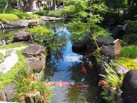 Hase-dera Temple: giardino