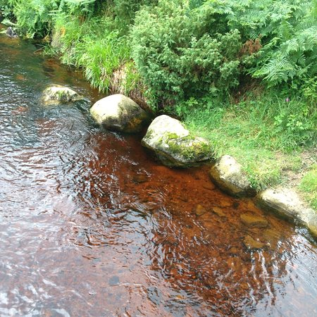 Aviemore, UK: A beautiful spot with some well signed posted walks. The parking is all only £2 all day for all