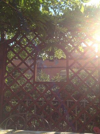 Episcopo Lipinsky B&B: The Balconies
