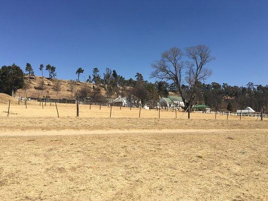 Van Reenen, Sør-Afrika: photo0.jpg