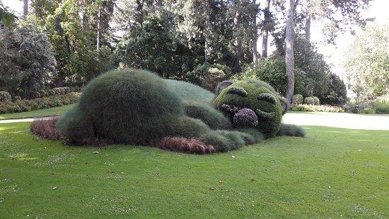 Chat dormeur - Picture of Jardin des Plantes, Nantes ...