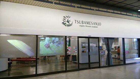 Tsubame Sanjo Wing