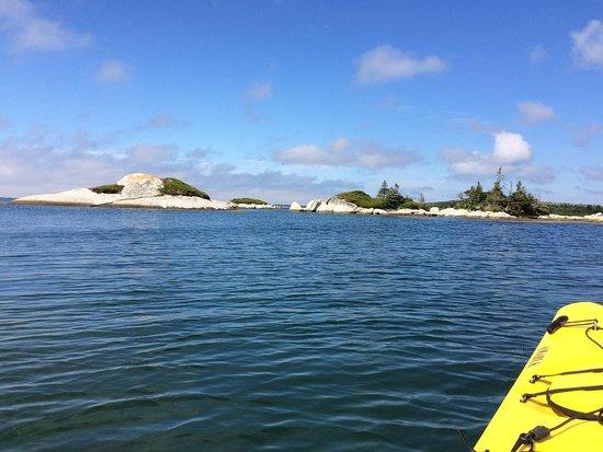 East Coast Outfitters Sea Kayaking: photo2.jpg
