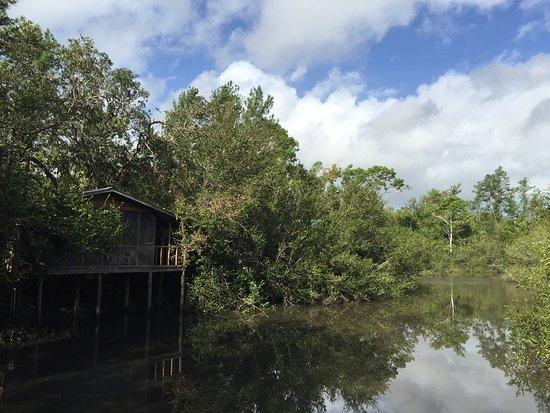 Ladyville, Belize: photo0.jpg