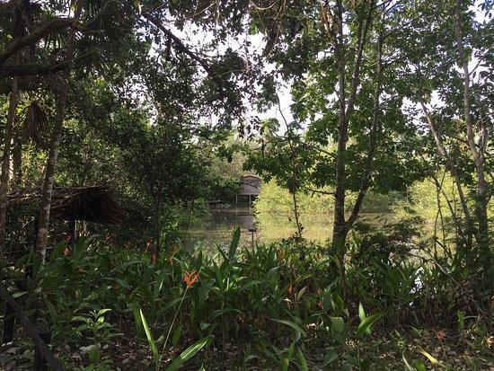 Ladyville, Belize: photo2.jpg
