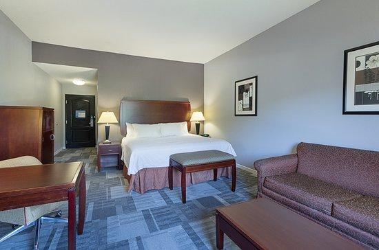 Hampton Inn & Suites Indianapolis/Brownsburg : king room