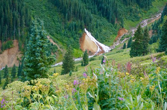 Mountain Village, CO: Ophir Pass