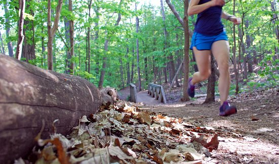 Montreal, Canadá: Trail Running Mont-Royal