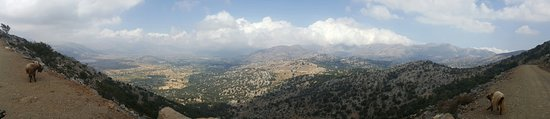 Safari Club Crete: 20160809_101606_large.jpg