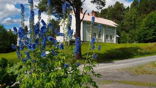 Kretsloppshuset: Trädgården