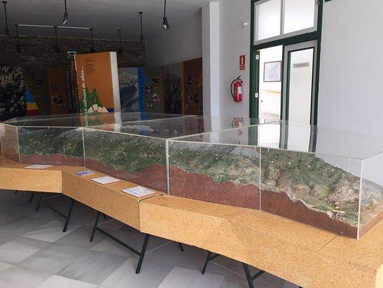 Laujar de Andarax, Spagna: photo1.jpg