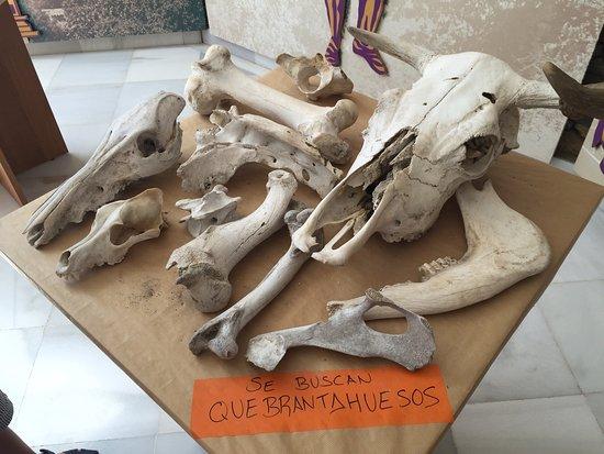 Laujar de Andarax, Spagna: photo2.jpg