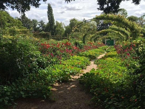 Limetz-Villez, França: ガーデン