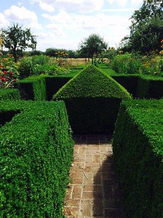 Le Jardin Plume: buis