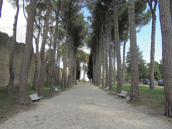 San Ginesio, Italia: Interno