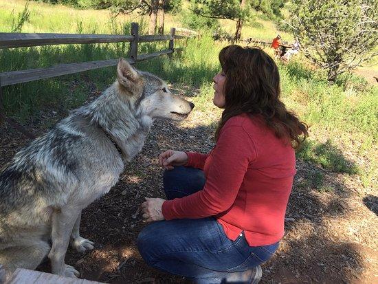 Woodland Park, CO: Saying good-bye