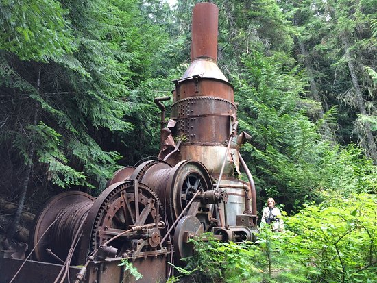 Clarkia, ID: Steam donkey on the river bank along Cedar Grove
