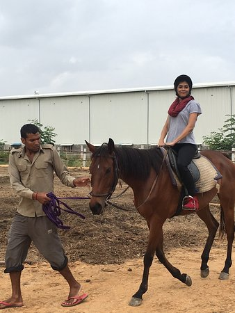 Bangalore Horse Riding School