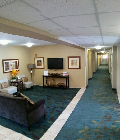 Candlewood Suites Hot Springs: Hotel Lobby & Corridor