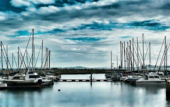 Gordon's Bay, Sør-Afrika: FB_IMG_1467017795511_large.jpg