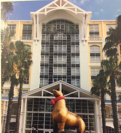 The Table Bay Hotel: Фото сделанное мной проживая в отеле.