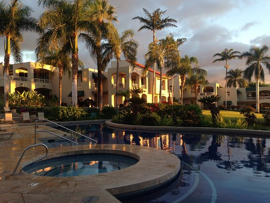 Palms at Wailea Photo