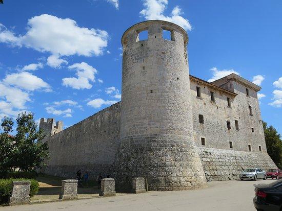 Svetvincenat, Kroatië: Castle