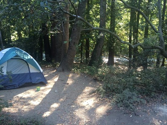 Big Sur Campground & Cabins: Our spot