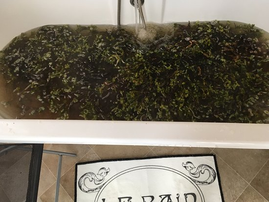 Achill Seaweed Baths
