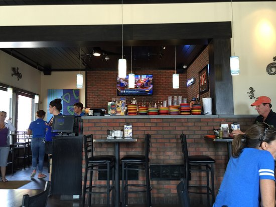Photos About The Blue Iguana In Le Claire Ia