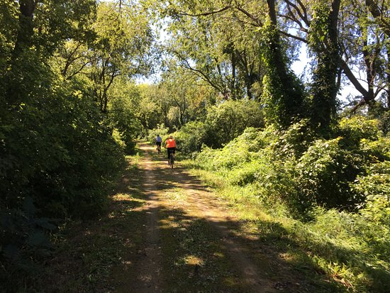 Verona, WI: Military Ridge State Trail